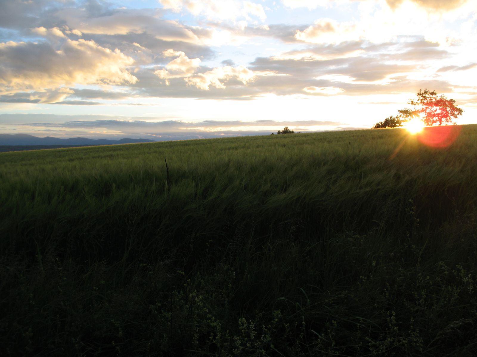 Arc en soleil sur la vallée et coucher de soleil sur le Pilat
