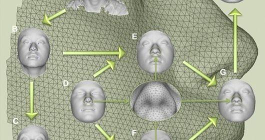 Una ricerca ricostruisce il volto delle persone dal DNA