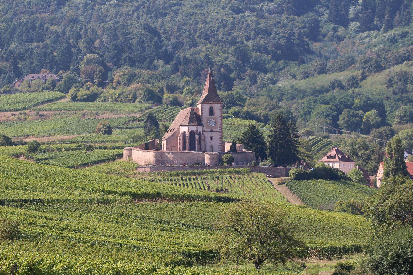 Escapade gourmande sur la route des Vins d'Alsace.