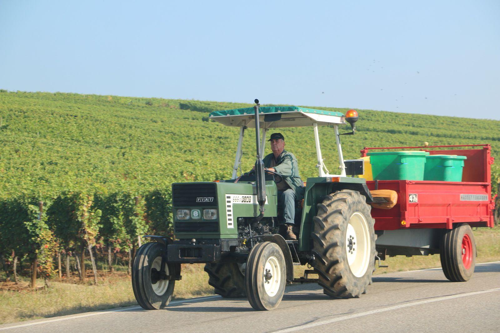 Des engins agricoles sillonnent routes et sentiers viticoles.