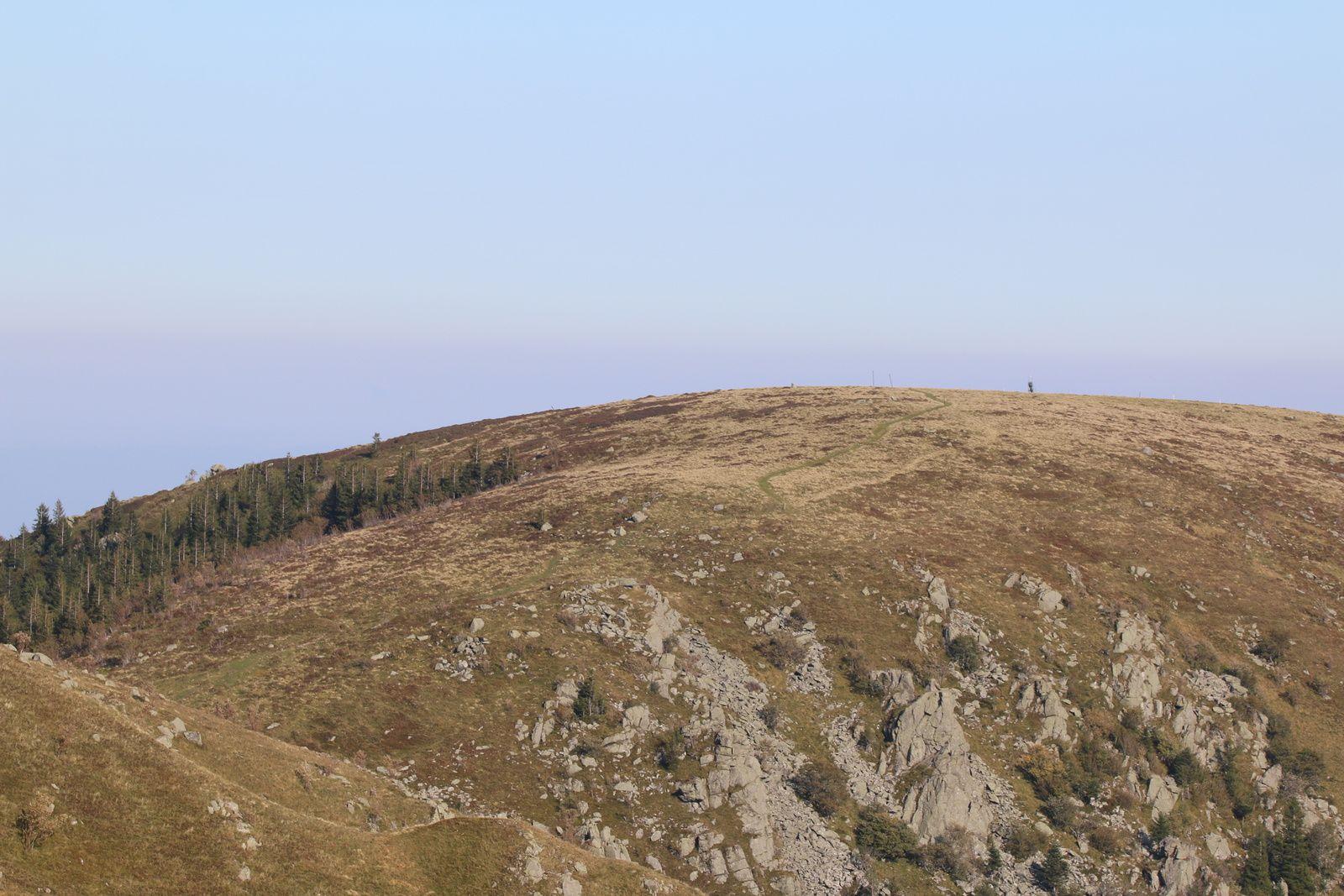 Des dizaines de sentiers de rando convergent vers le sommet du Hohneck.