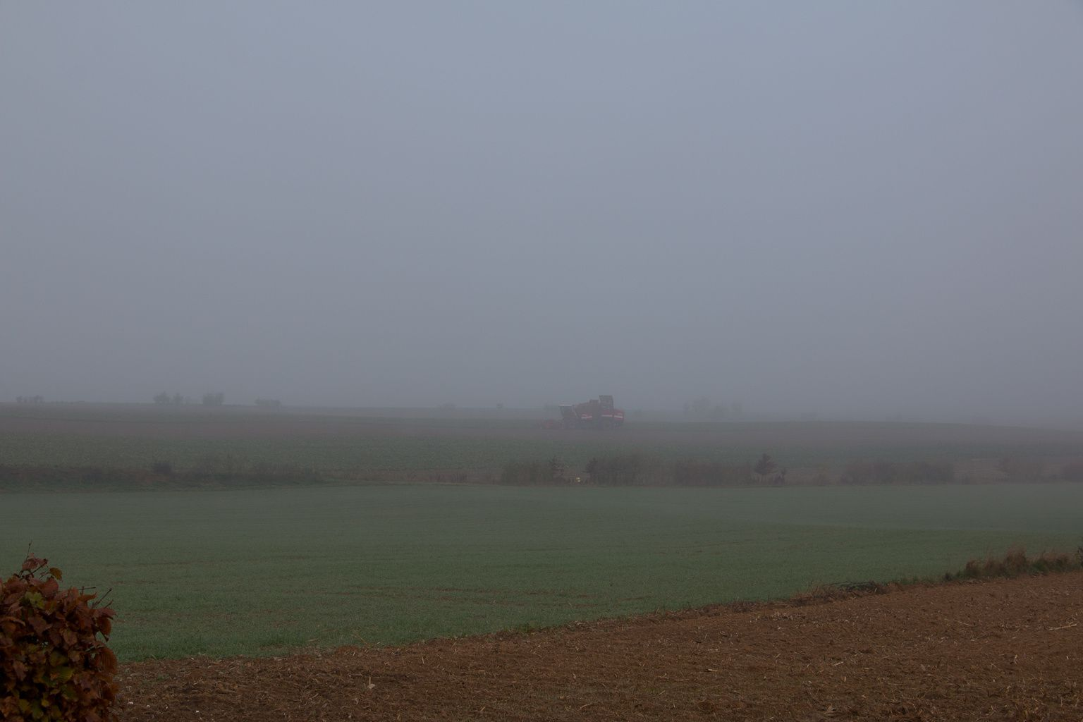 Le silence se prolongeait. Il devenait de plus en plus épais, comme le brouillard du matin. Épais et immobile.   Le Silence de la mer - Vercors