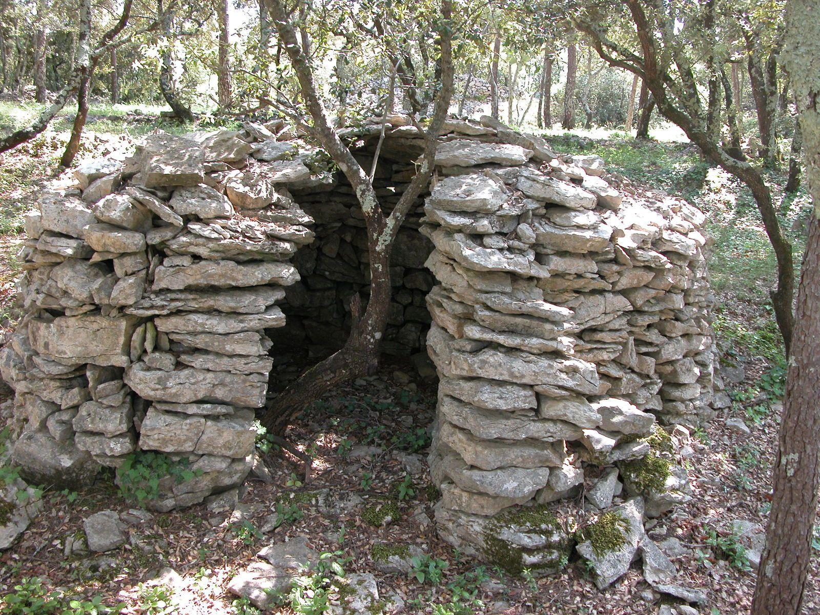 Cette cabane n'a plus de toit et un chêne pousse en son centre.