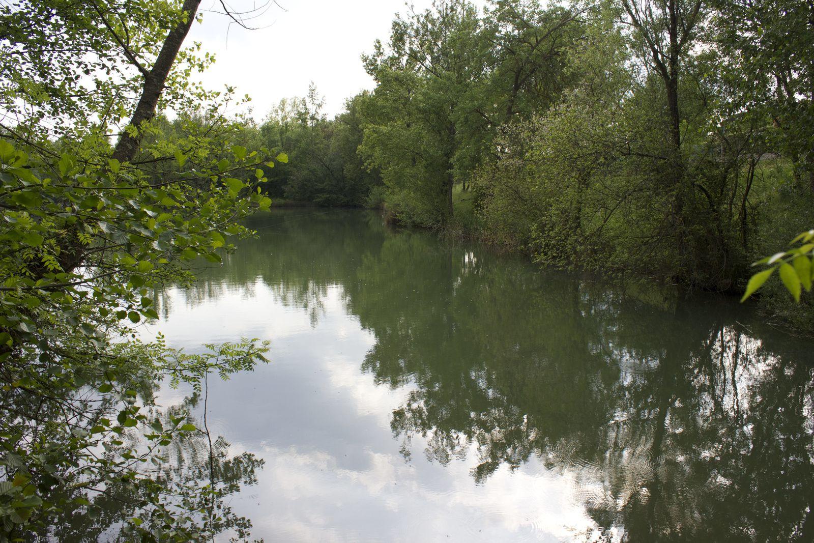 Lac du vieux Pigeonnier Tournefeuille