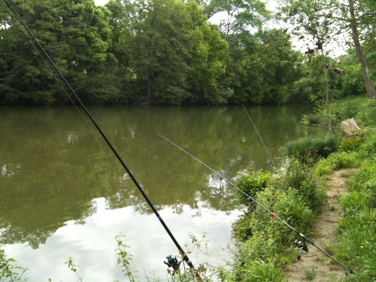 Pêche sur le Vidourle