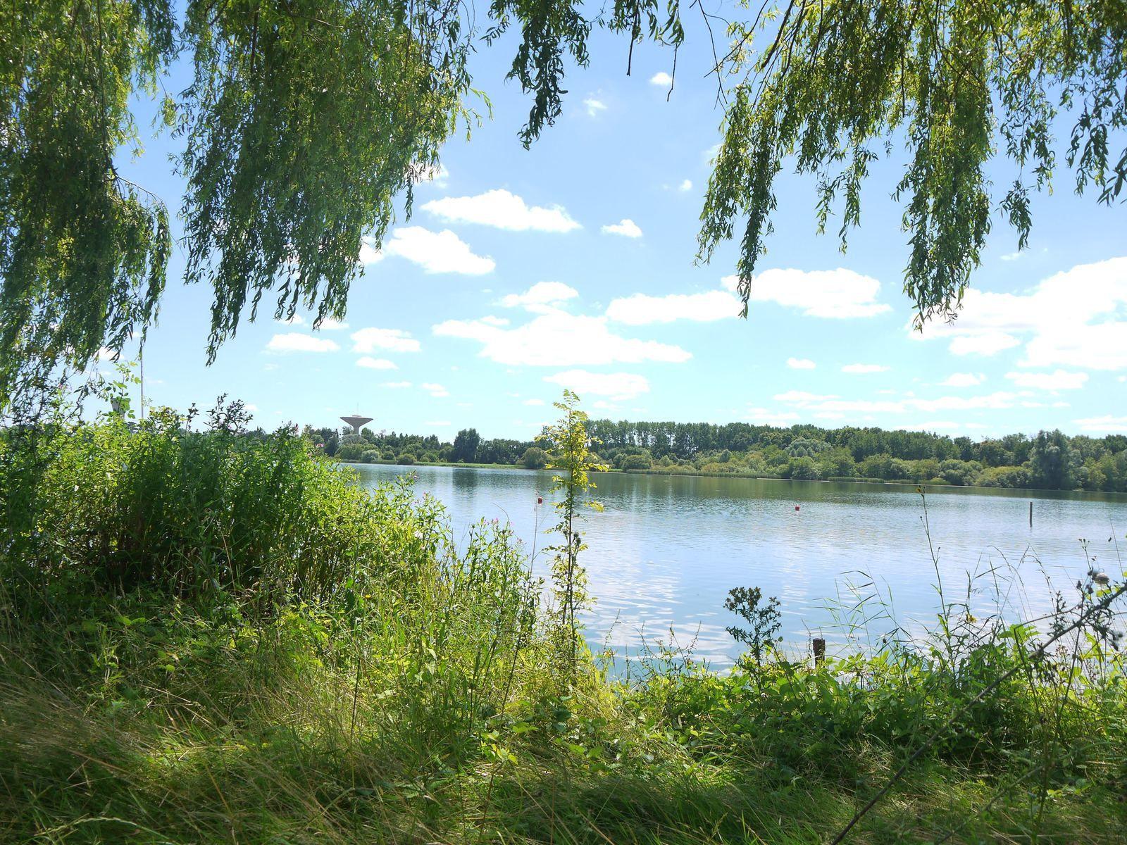 Promenade à la Base de loisirs de Saint-Quentin-en-Yvelines