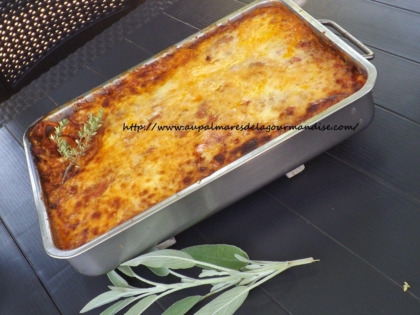 Lasagnes maison à la pate fraiche confectionnée en MAP avec sa sauce Bolognaise (Ig bas ou pas)