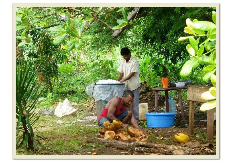 2014 Nicaragua (g) : Corn Island,une petite pépite à l'état brut