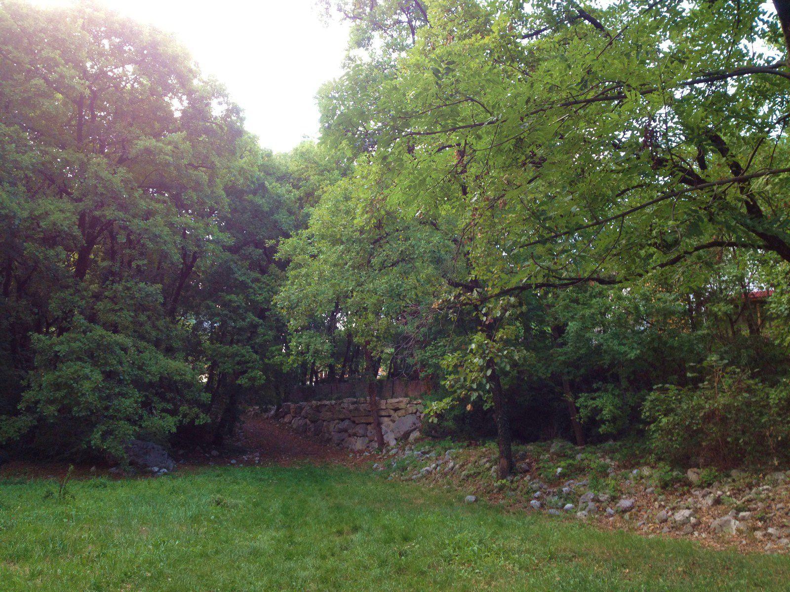 Impossible de photographier le Domaine de Beaurevoir, je l'ai piquée sur le net et il est écrit : Depuis les Côtes de Sassenage, on a une jolie vue sur les ruines du château médiéval, qui était autrefois illuminé pour les fêtes de fin d'année. Le meilleur moyen de voir le château de Beaurevoir, caché dans les arbres, est probablement, pour le commun des mortels, depuis le parc de l'Ovalie.Architecture baroque de la fin du XIX°, situé sur une propriété de 25 hectares aux côtes de Sassenage. Il fut construit par le célèbre gantier Alphonse Terray à l'époque où Grenoble était la capitale du gant.   Le domaine n'est pas visitable, il s'agit d'une propriété privée, louée pour des mariages, conférences...   A l'origine, il se nommait Beauregard.