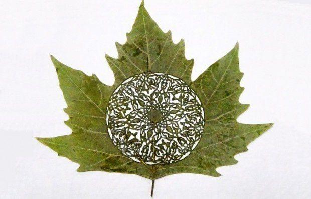 Des oeuvres d'art dans des feuilles d'arbre