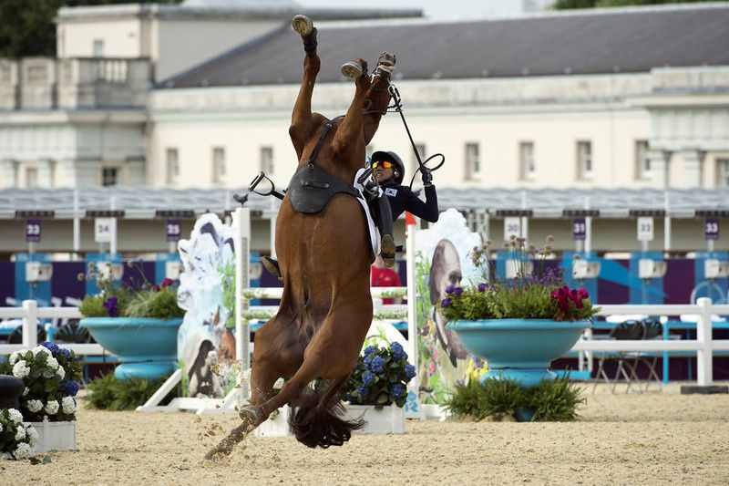 10/ South Korea's Hwang Woojin loses control of his horse Shearwater Oscar during the Show Jumping event of the Modern Pentathlon during the 2012 London Olympics at the Equestrian venue in Greenwich Park, London, on August 11, 2012. AFP PHOTO / JOHN MACDOUGALL/AFP/Getty Images