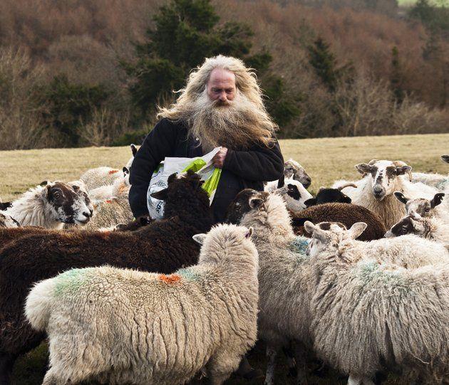 """""""Colin the Shepherd at Milton Abbot"""", Devon - Les Bennett"""