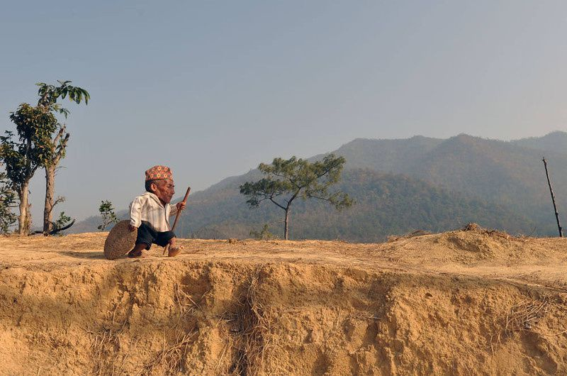 4/ Chandra Bahadur Dangi, a 72-year-old Nepali who claims to be the world's shortest man at 56 centimetres (22 inches) in height, walk near his home in Reemkholi village in Dang district, some 540 kilometres southwest of Kathmandu on February 21, 2012. Dangi will embark to the capital city as Guinness World Records experts are due to arrive in Nepal to measure a 72-year-old claiming to be the world's shortest man. AFP PHOTO/Prakash MATHEMA/AFP/Getty Images