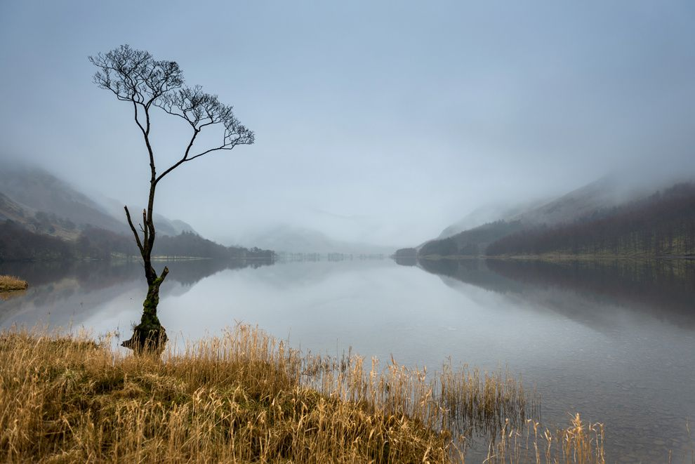 "8. ""Prayer."" Fog thickened to the point that the mountains on the horizon, have almost disappeared from view. And then I noticed the tree. Its branches as if pleading for someone to draw attention to themselves. Can I? Buttermere, Cumbria, England. (Alf Bailey / National Geographic Traveler Photo Contest)"