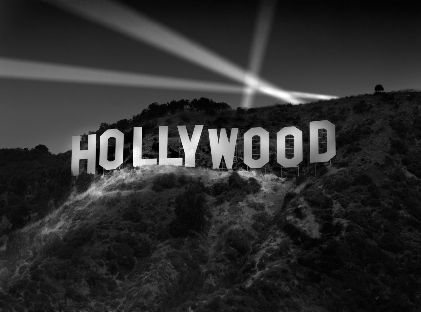 Les STARS d'Hollywood (Splendide Album)