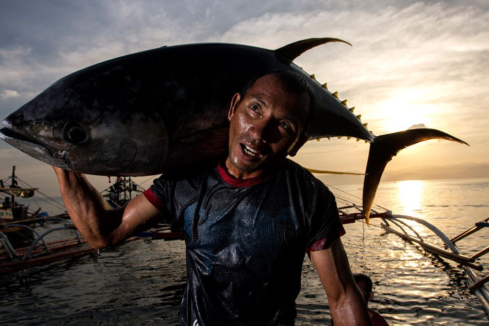 "37. ""Workaholic."" Filipino workers unloaded tons of tuna every day. Most often fish carcass weights greater than themselves, but these people make their living. General Santos City, Philippines. (Ybrael Abergas / National Geographic Traveler Photo Contest)"