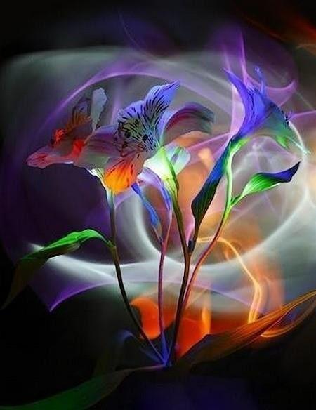 « Les mots que l'on n'a pas dits sont les fleurs du silence » (proverbe japonais)