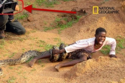 Un esprit professionnel : National Geographic