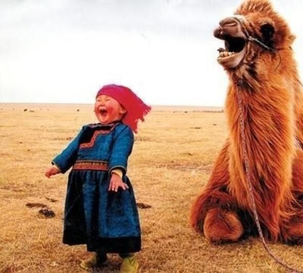Happiness is contagious