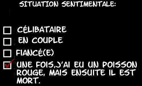 Situation sentimentale