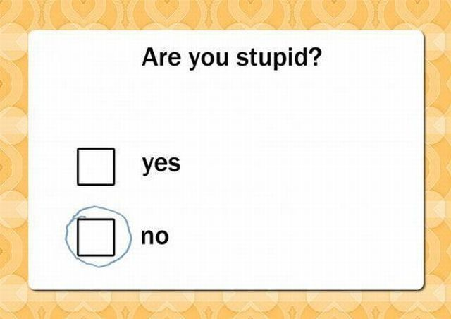 Are you stupid ?