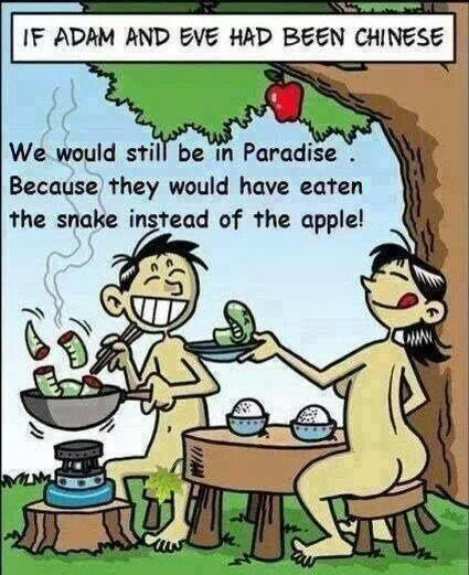 If Adam &amp&#x3B; Eve had been chinese..