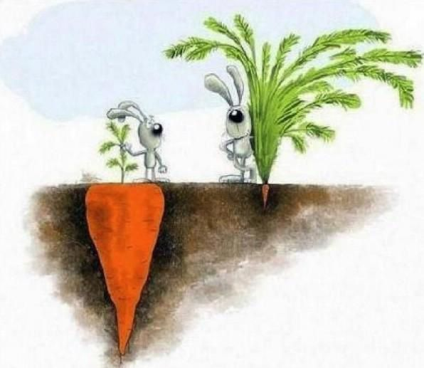 Success is not always what you see
