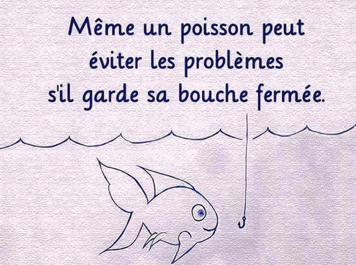 Même un poisson peut éviter les problèmes s'il garde la bouche fermée...
