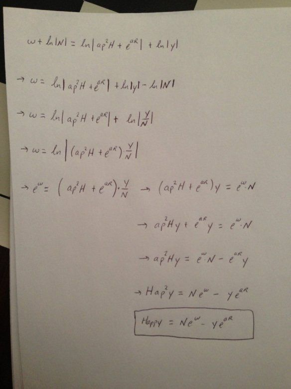 Happy New Year Equation