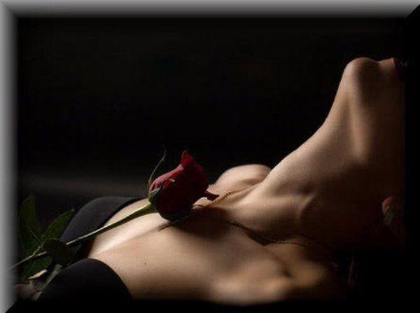 """""""Baiser, rose trémière au jardin des caresses."""" - Paul Verlaine"""