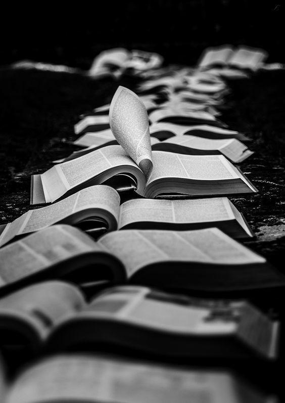 """""""Un livre est comme un jardin que l'on porte dans sa poche."""" — Gladys Taber"""