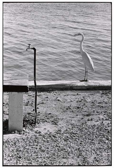 USA. 1968. Florida Keys.