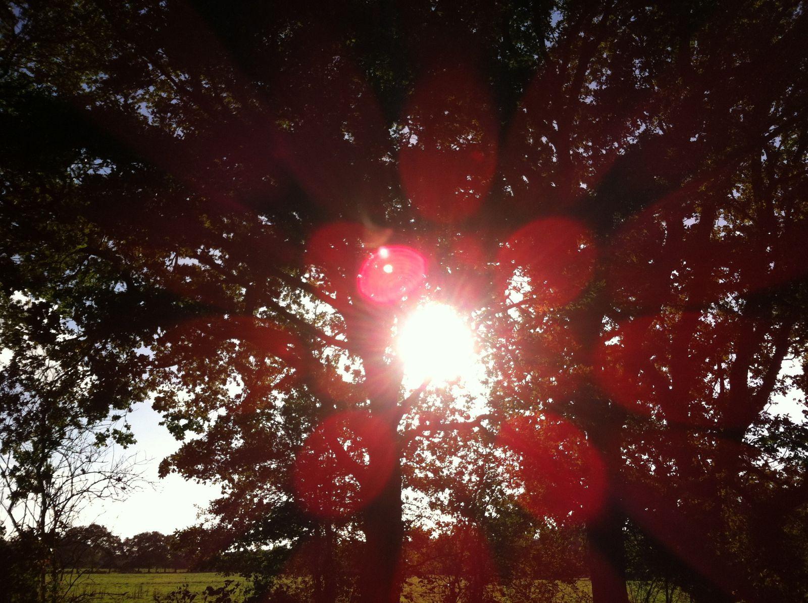 Du soleil en Bretagne