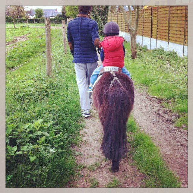 Balade en poney