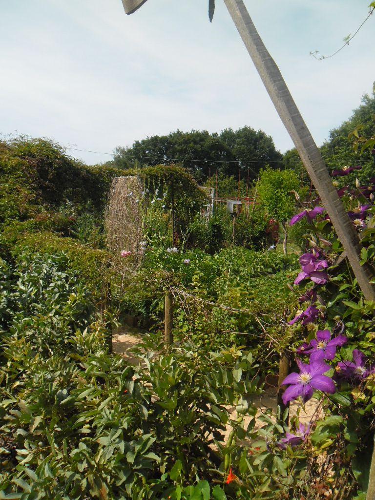 Nos sorties dans les jardins...