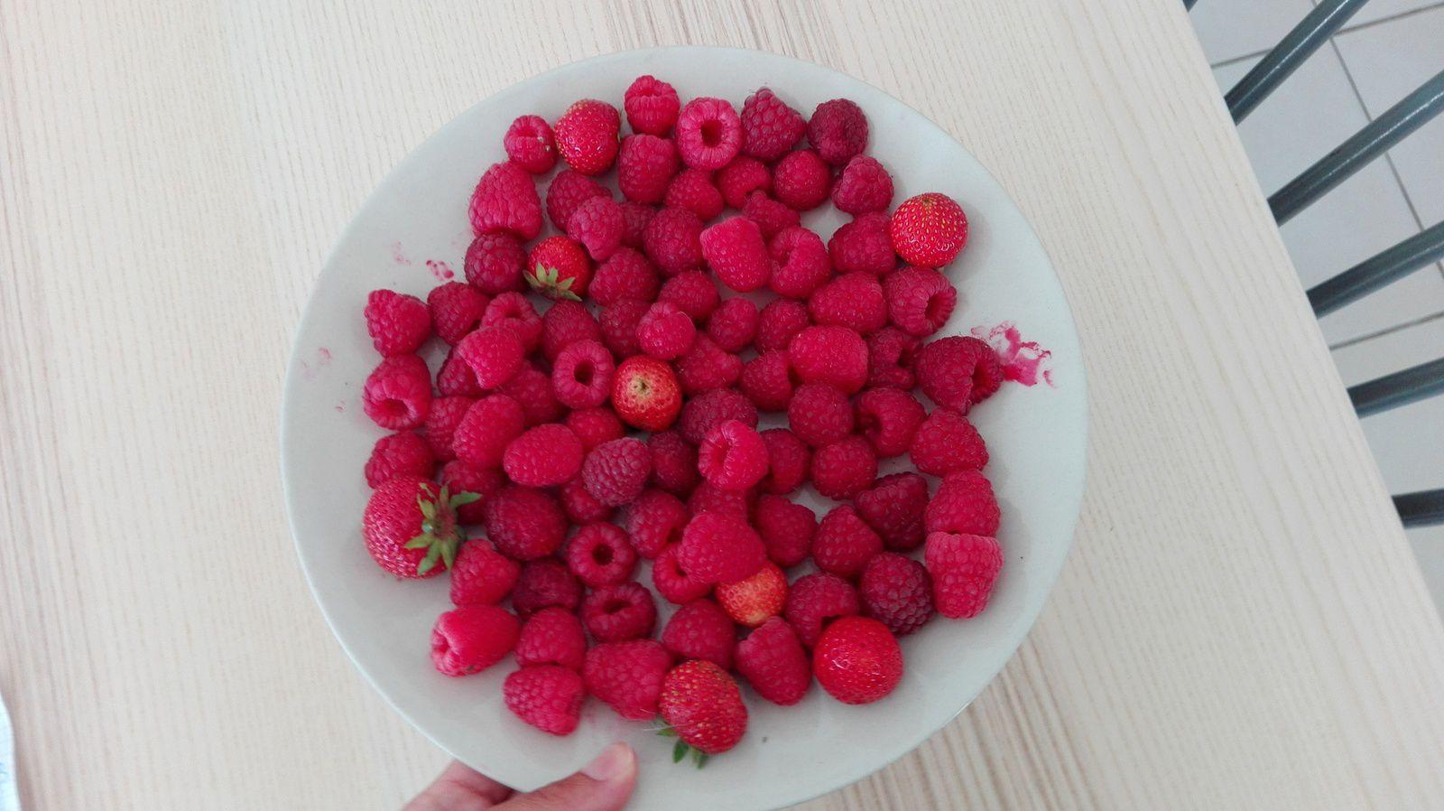 Miam les framboises/fraises du jardin