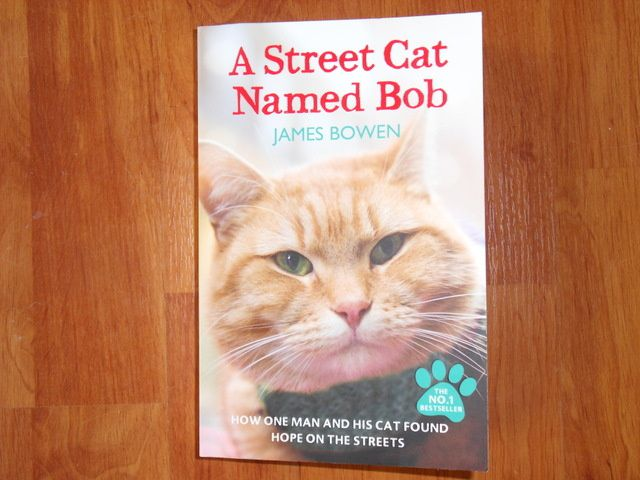 a street cat named bob how one man and his cat found hope on the streets