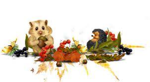 """On dit que """" Celui qui veut avoir des fruits mûrs doit respecter l'arbre jusqu'à l'automne""""."""