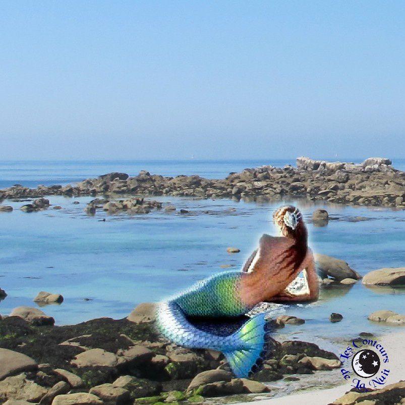 En Armorique, le littoral est fréquenté par des sirènes. Dotées d'un magnifique corps de femme terminé par une queue de poisson, la chevelure souvent entremêlée d'algues, elles sont surtout un symbole de séduction.  Elles habitent dans de magnifiques châteaux sous la mer. Cependant elles n'hésitent pas à venir se baigner ou se reposer dans les trous d'eau entre les rochers le long du rivage.   Mais elles ont horreur d'être vues. Et si par hasard, il arrive qu'on les surprenne dans leurs ébats aquatiques, il vaut mieux ne pas révéler sa présence, car leur colère peut être terrible. De même, il faut prendre garde à ne pas toucher la chevelure des sirènes que l'on remet à l'eau, si l'on ne veut pas être victime de ses sortilèges…