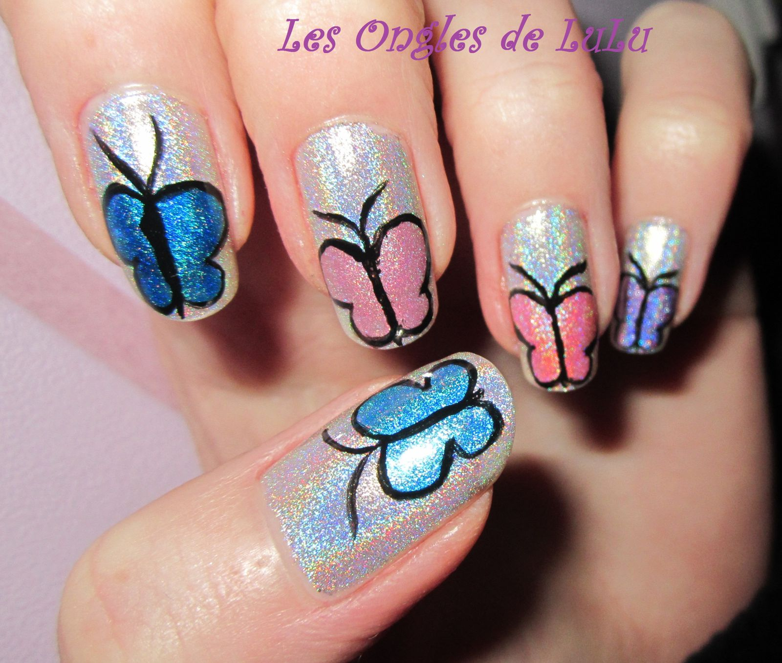 Butterfly Holographique