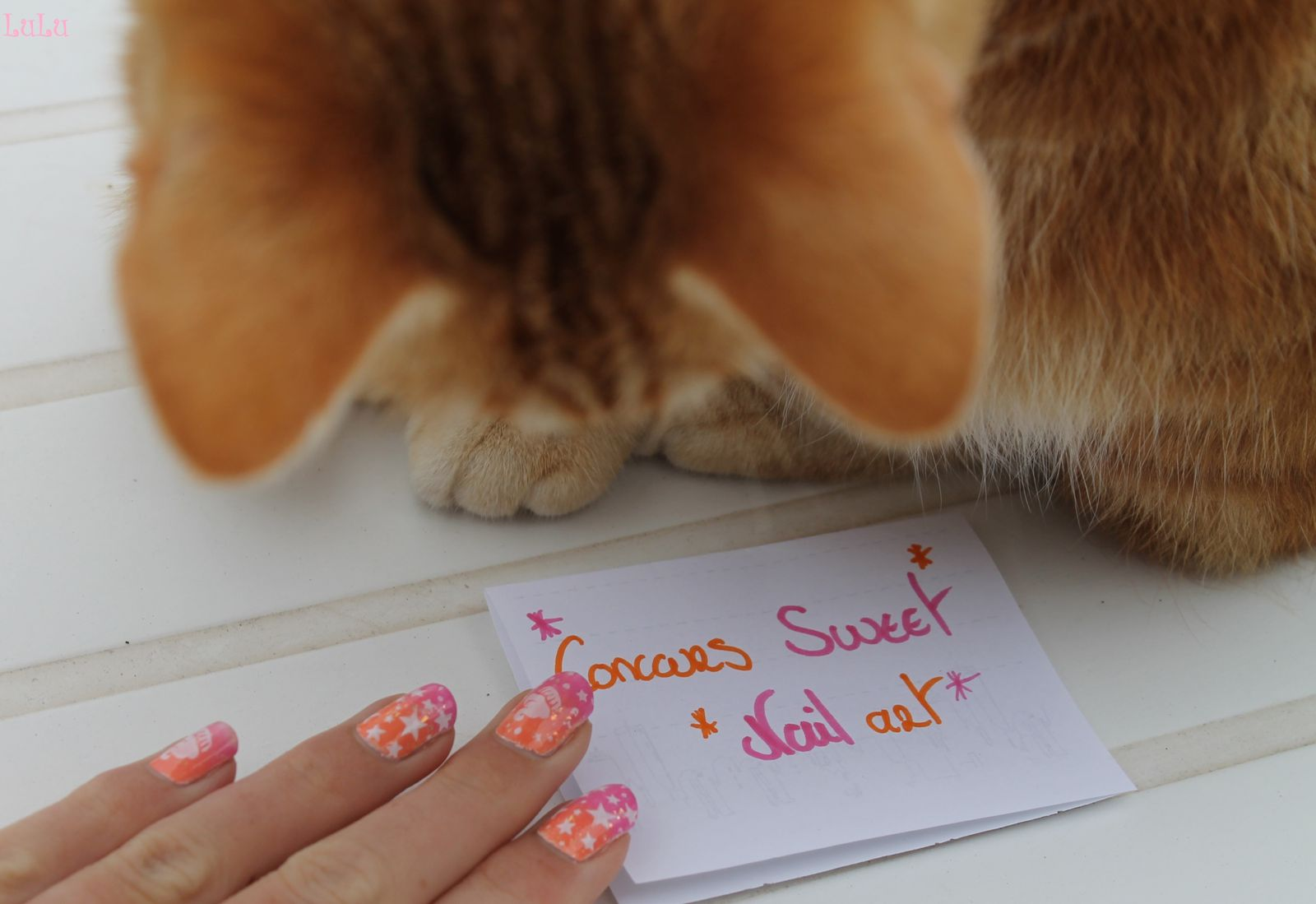 concours sweet nail art