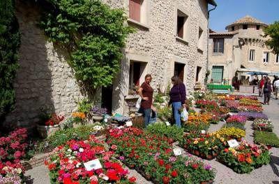Fête des fleurs à Velleron le 05/05/16