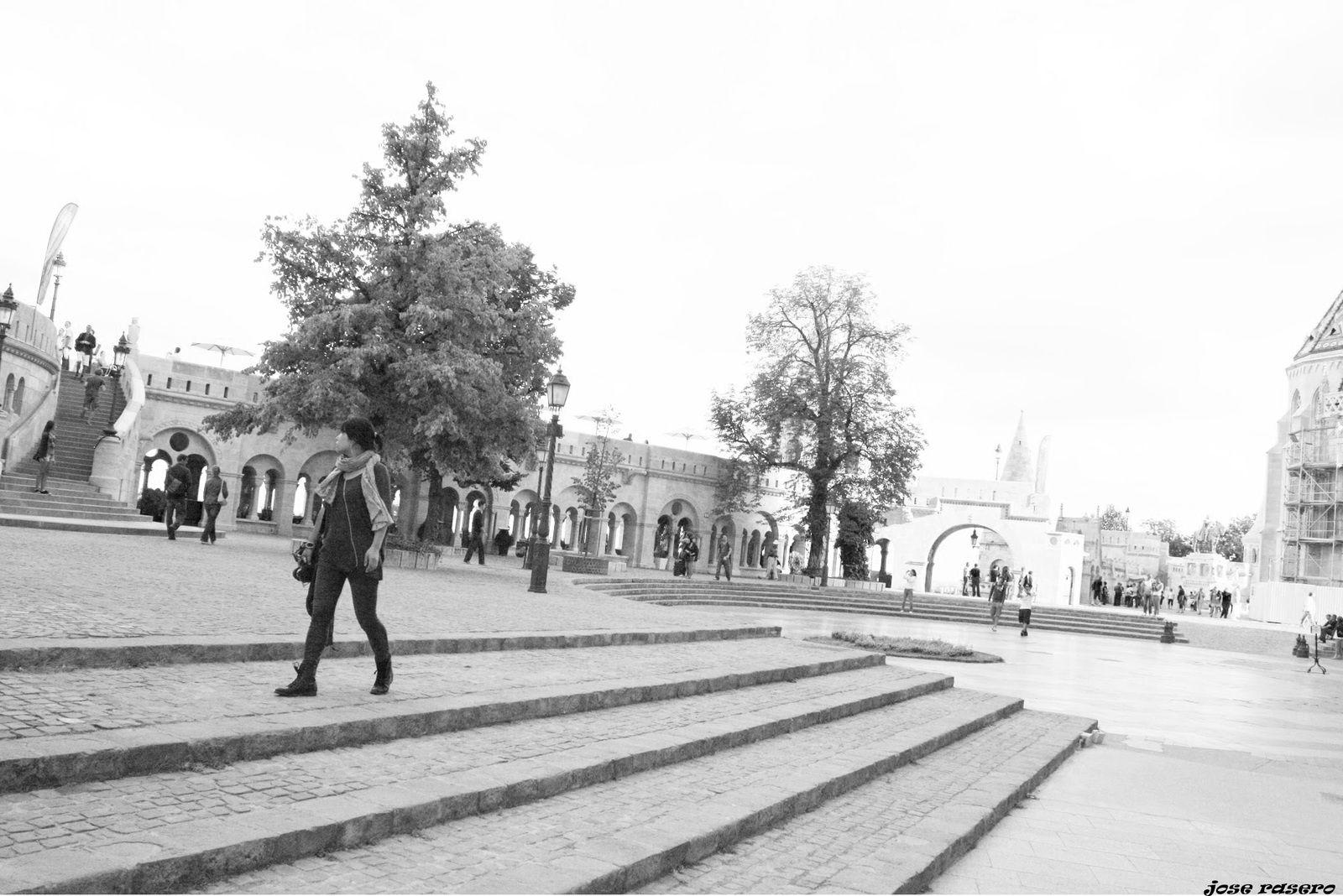 'Budapest 2'