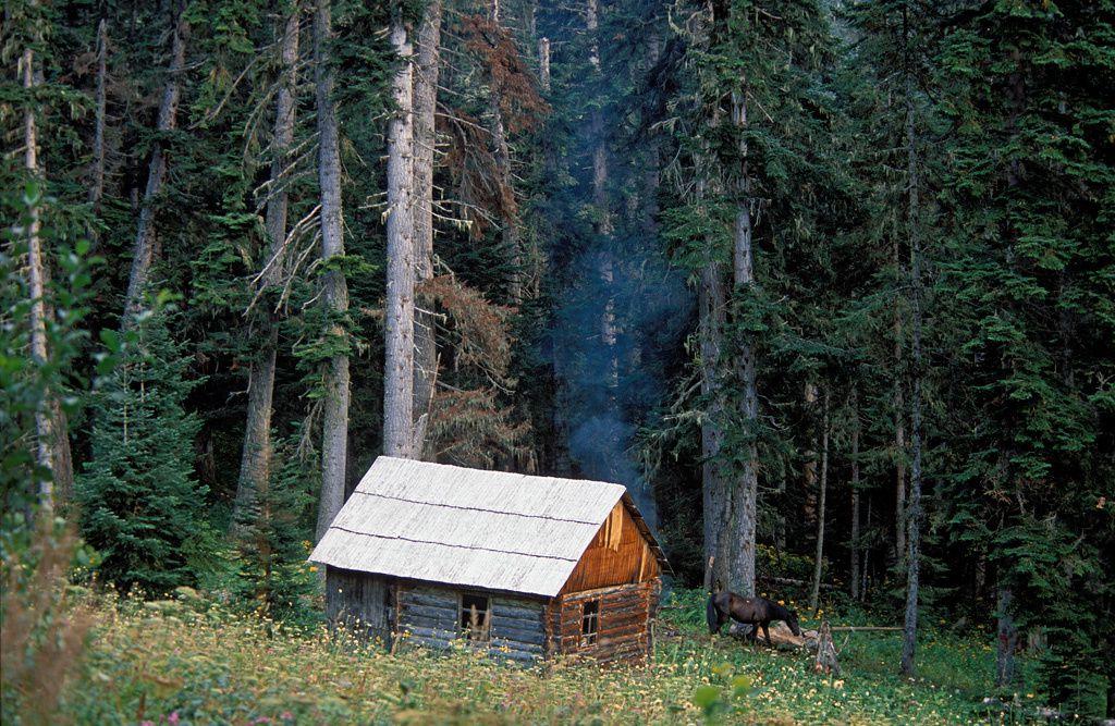Une chaumière dans la réserve du Caucase.