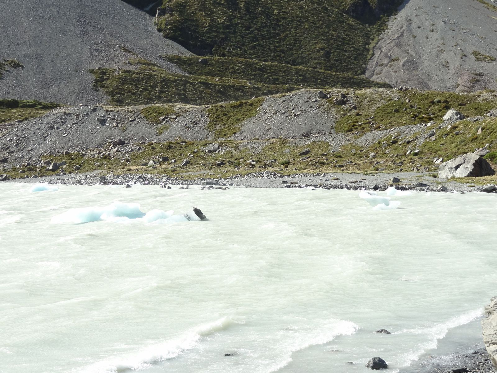 Des icebergs.