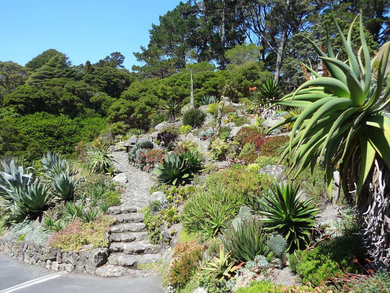 Wellington - 3 décembre 2012
