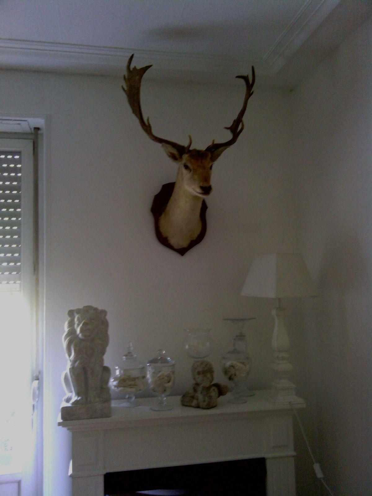 salon baroque emmanuelle milossis. Black Bedroom Furniture Sets. Home Design Ideas