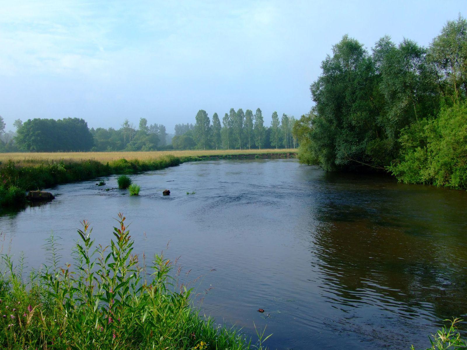 Photos de notre belle rivière : la Meurthe