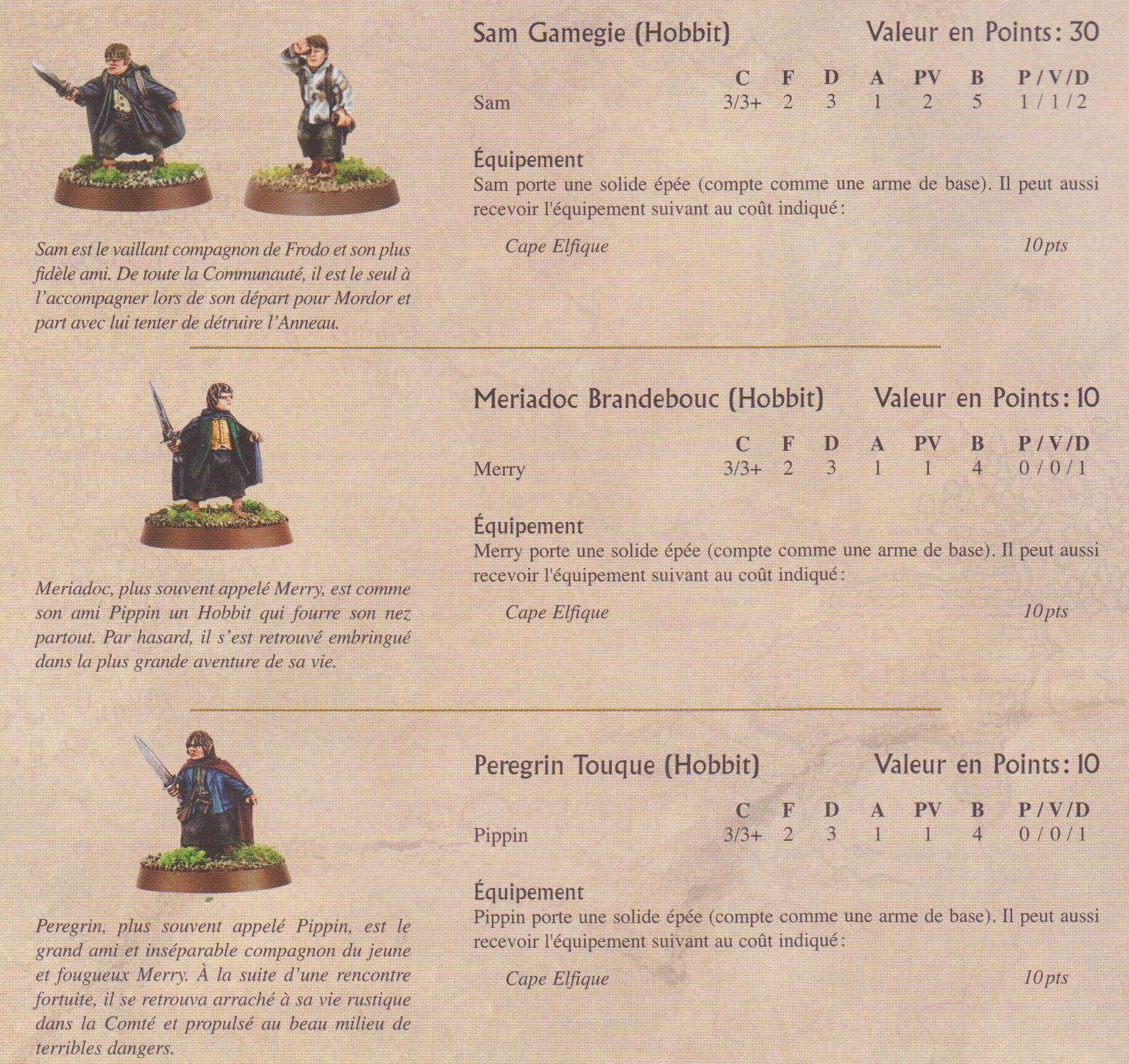 Les protagonistes ! Pour equilibrer le scenario, nous avons donné 7 points de volonté aux nazguls , sauf le roi sorcier qui lui eu droit à 2 points de vie et 10 pv..