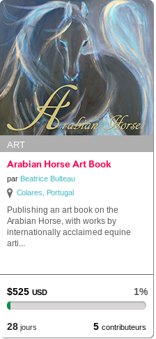 Arabian Horse Art Book
